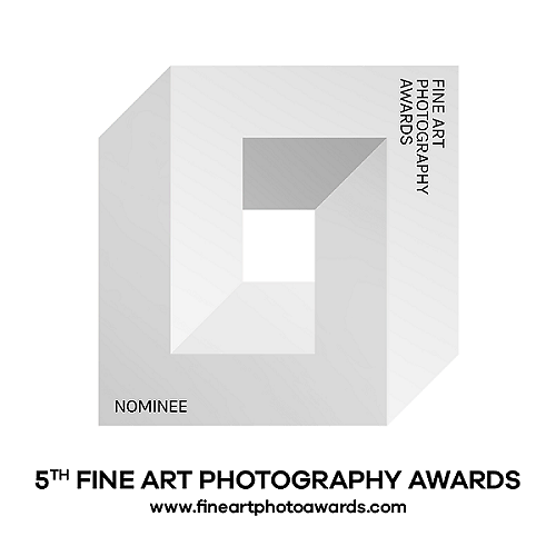 exhibitions and awards